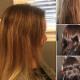 Michael Alonzo Hair Studio - Salons de coiffure et de beauté - 519-758-1348