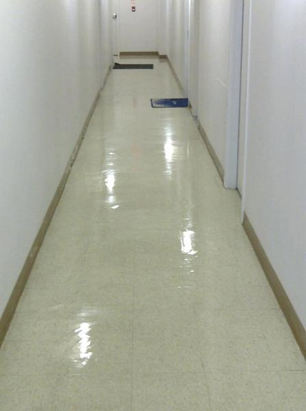 Bogy Commercial Cleaning - Photo 9
