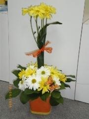 Les Folleries Fleuries  - Photo 10