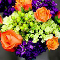 Grower Direct Fresh Cut Flowers Inc - Florists & Flower Shops - 780-875-8445