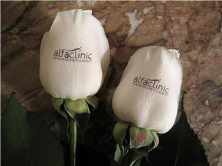 Alfa Clinic - Photo 7