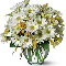Fleuriste Beau Geste - Fleuristes et magasins de fleurs - 514-382-2223
