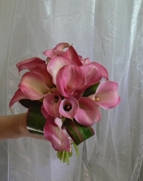 Fleurs En Folie - Photo 5