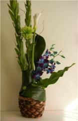 Fleurs En Folie - Photo 7