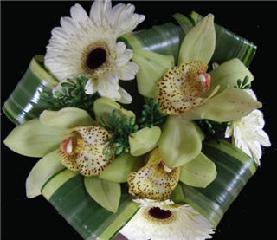 Jules d'Alcantara Gardenia Fleuriste - Photo 7