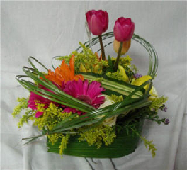 Jules d'Alcantara Gardenia Fleuriste - Photo 9
