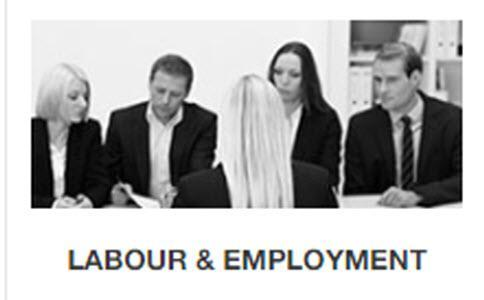 Terminations, Labour Relations, Human Rights, Employee Relations Lawyers, Rights & Obligations of Employers and Employees Lawyers