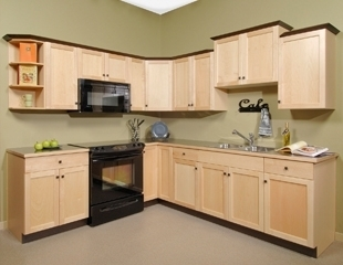 Euro rite cabinets port coquitlam bc 1180 1971 for Bathroom cabinets surrey bc