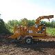 Steve's Tree Service - Service d'entretien d'arbres - 819-684-4938