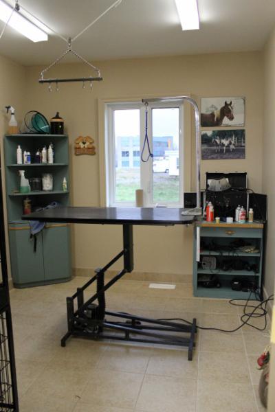 Salon de toilettage inter beaut canin et felin horaire for Salon toilettage
