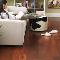 Touchtone Carpets Ltd - Flooring Materials - 780-414-0862