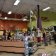 Petland - Pet Food & Supply Stores - 780-513-4409