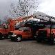 Custom Tree Service - Tree Service - 5193599876