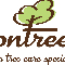 Ontree - Tree Service - 416-412-2100