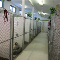 A-1 Boarding Kennels Ltd - Kennels - 250-763-2202