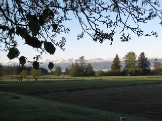 Sod Farm Vancouver Island