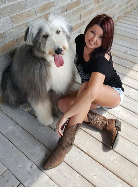 Dog Groomer Reviews Ottawa