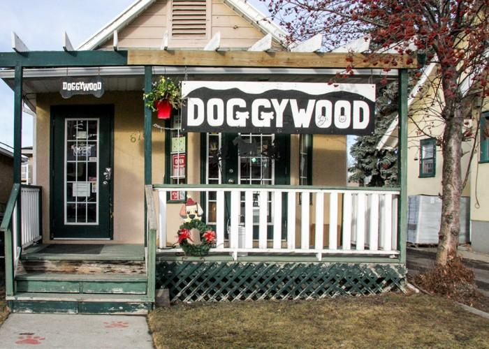Doggywood calgary ab 616 1 ave ne canpages - Halo salon vancouver ...