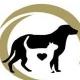 Wag Pet Resort - Kennels - 519-696-2329