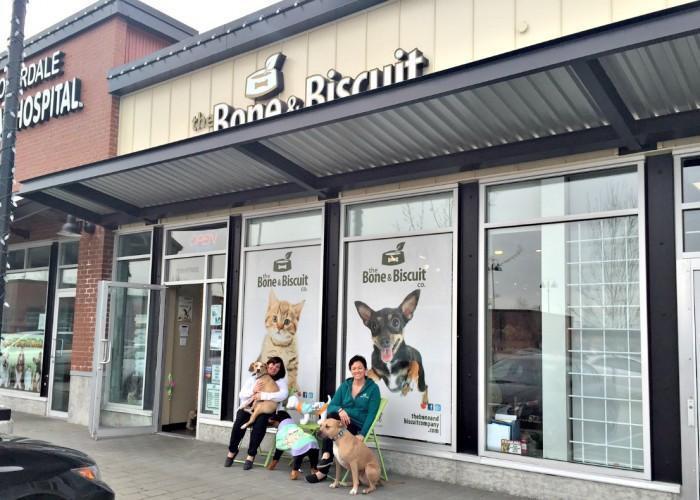 Innova Evo Cat Food Canada