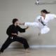 All Canadian Martial Arts Academy - Écoles et cours d'arts martiaux et d'autodéfense - 905-277-0667