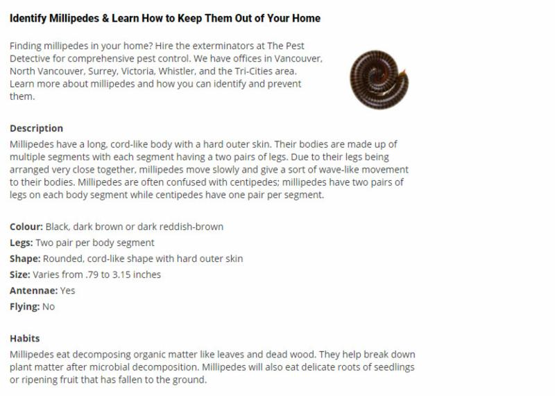 Millipedes & Learn How to Keep Them Out of Your Home