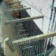 Dumont Foundations & Interlock - Foundation Contractors - 613-723-2241