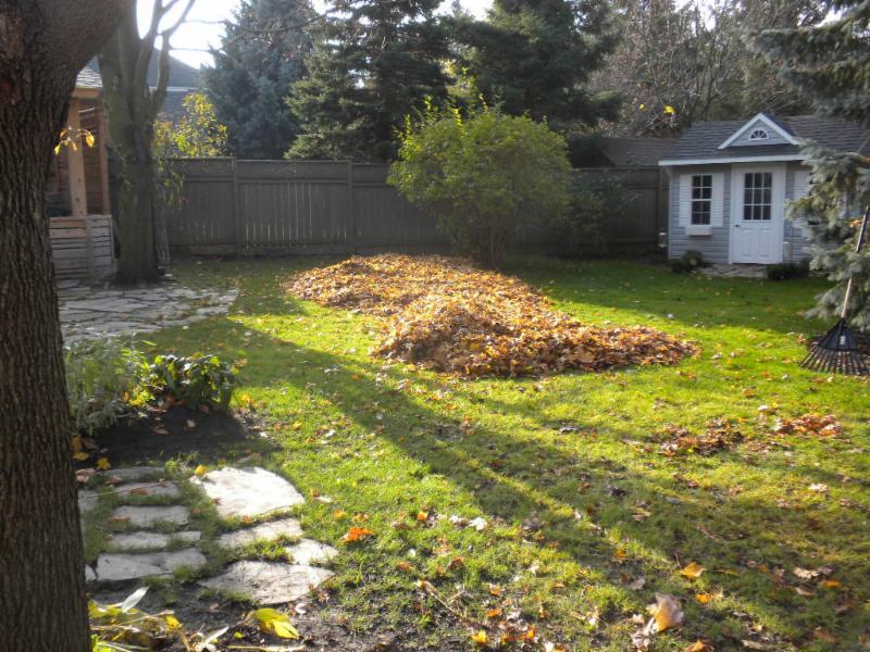 Lawns Of Distinction Kitchener On 40 Perkell Pl