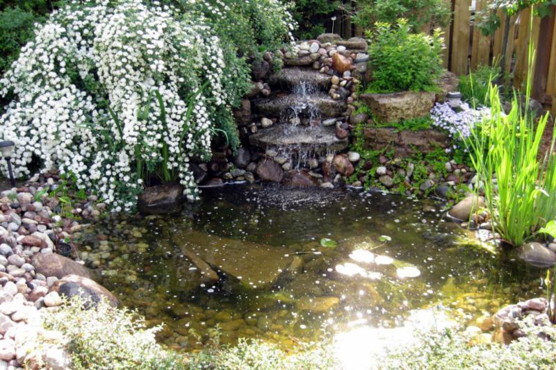 Am nagement paysager goyer beloeil qc 24 rue michel - Amenagement bassin poisson exterieur argenteuil ...