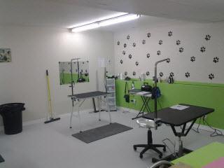 Salon toilettage poil doux horaire d 39 ouverture 885 3e - Salon toilettage chien ...