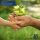 Services Financiers Chalifoux - Assurance de personnes et de voyages - 5145056999
