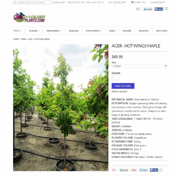 calgary plants online garden center horaire d 39 ouverture. Black Bedroom Furniture Sets. Home Design Ideas