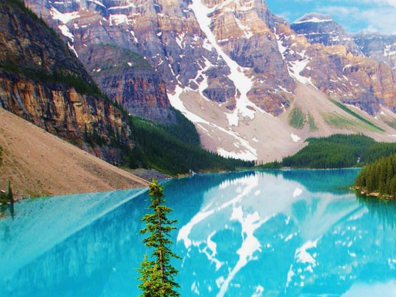 Calgary Travel Agency Ne