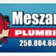 Meszaros Plumbing - Plumbers & Plumbing Contractors - 250-804-6621