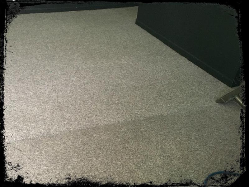 Accent Carpet - Carpet Vidalondon