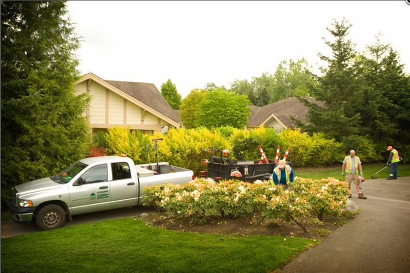Images of Ecoworks Landscape Services Inc - Landscape Services: Ecoworks Landscape Services Inc