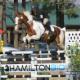 Raynham Stables - Écoles et cours d'équitation - 905-859-0057