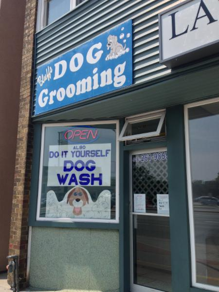 Bluffs dog grooming opening hours 2430 kingston rd scarborough on add a photo do you own this business manage your page bluffs dog grooming solutioingenieria Image collections