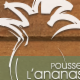 Pousse l'Ananas - Grocery Stores - 5142706873