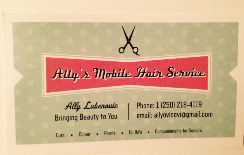 Ally S In Home Hair Service Canpages