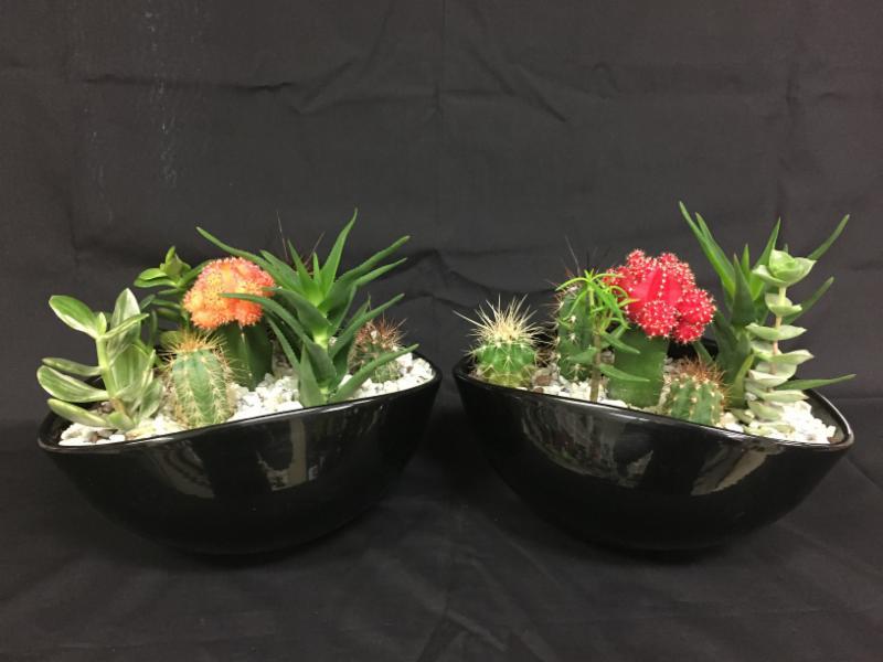 Fruit Flower Baskets Edmonton : Macyk s florist saint boniface mb vermillion rd