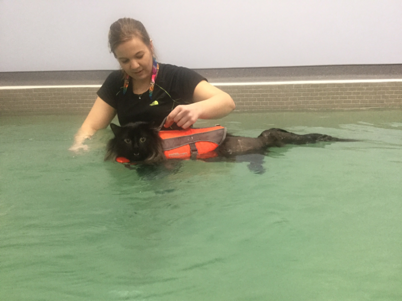 New Indoor Hydrotherapy Pool
