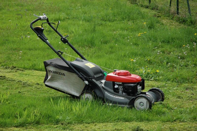 Tonte de pelouse tonzy gazon laval qc rue for Tonte de pelouse a domicile