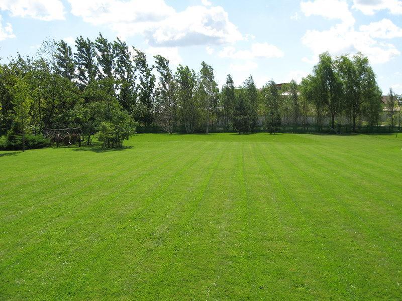 Tonte de pelouse tonzy gazon laval qc rue for Forfait tonte pelouse