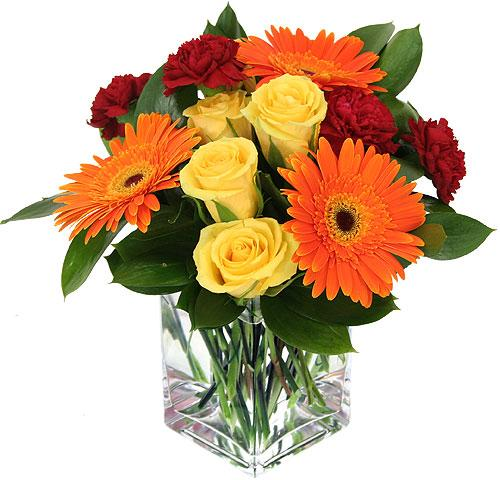 Boutique fleurs des jardins horaire d 39 ouverture 290 for Bouquet de fleurs quebec