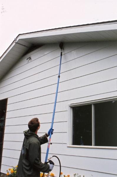 Squeegee Boy Window Cleaning Amp Pressure Washing Sherwood