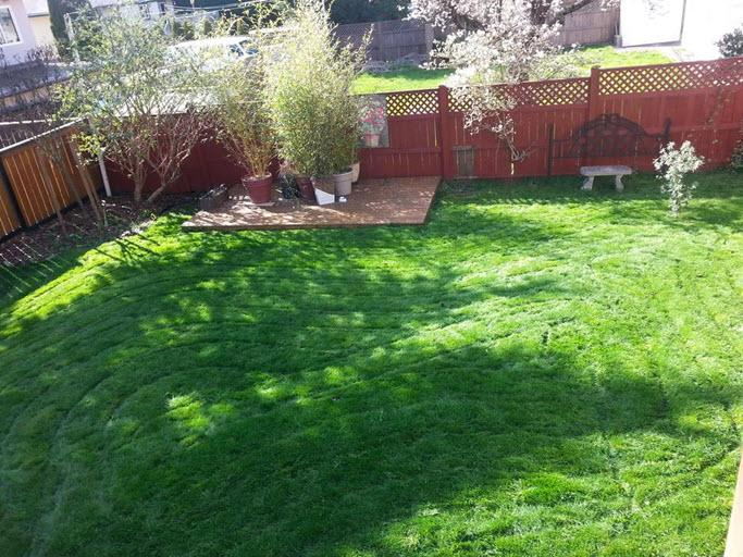 Garden Design Victoria Bc eric's lawn care and garden design - opening hours - 2840 dysart