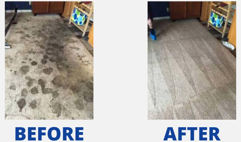 advanced carpet, rug, duct, and furnace cleaning in red deer