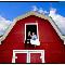 H O M Photo Inc - Portrait & Wedding Photographers - 780-472-2000