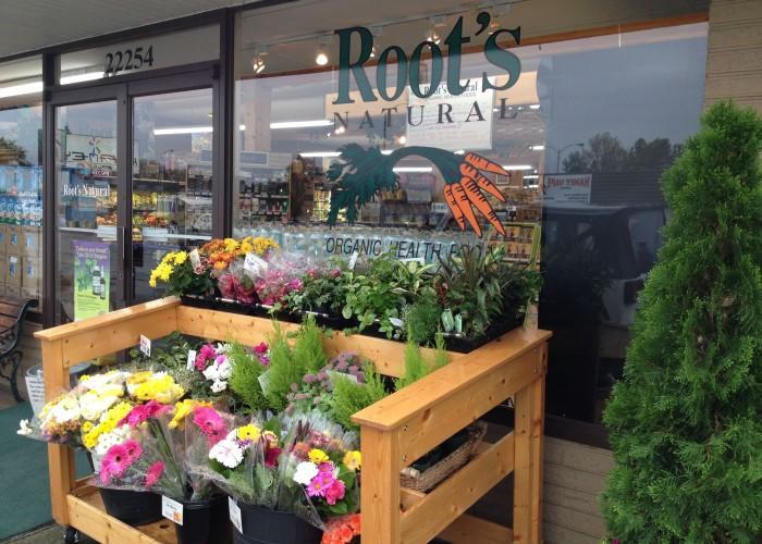 Roots Health Food Store Maple Ridge Bc